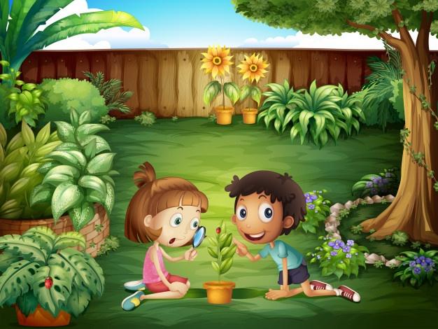 انواع حشرات به انگلیسی - آموزش به کودکان
